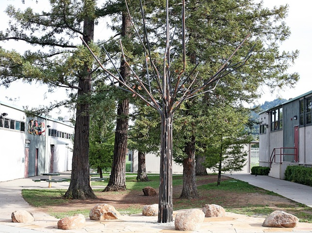 HHS tree